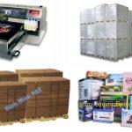 In thùng carton, in hộp giấy xuất khẩu