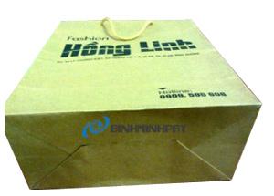 Túi giấy kraft thời trang Hồng Linh