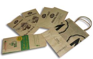 in túi giấy kraft giá rẻ đựng thực phẩm