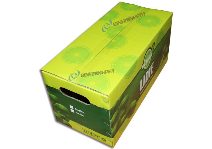 Thùng carton đựng chanh xuất khẩu 1