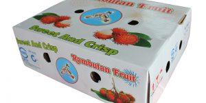 In hộp chôm chôm xuất khẩu - hinh 3