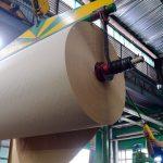 Đang khát giấy,  Trung Quốc gom sạch giấy cuộn từ Việt Nam