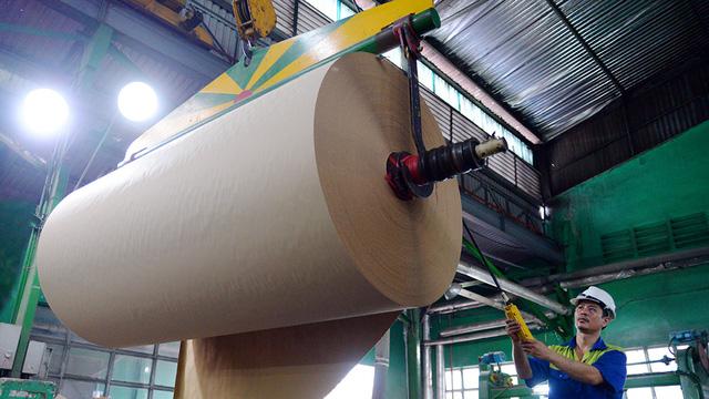 Đang khát giấy, Trung Quốc gom sạch giấy cuộn từ Việt Nam - hinh 1