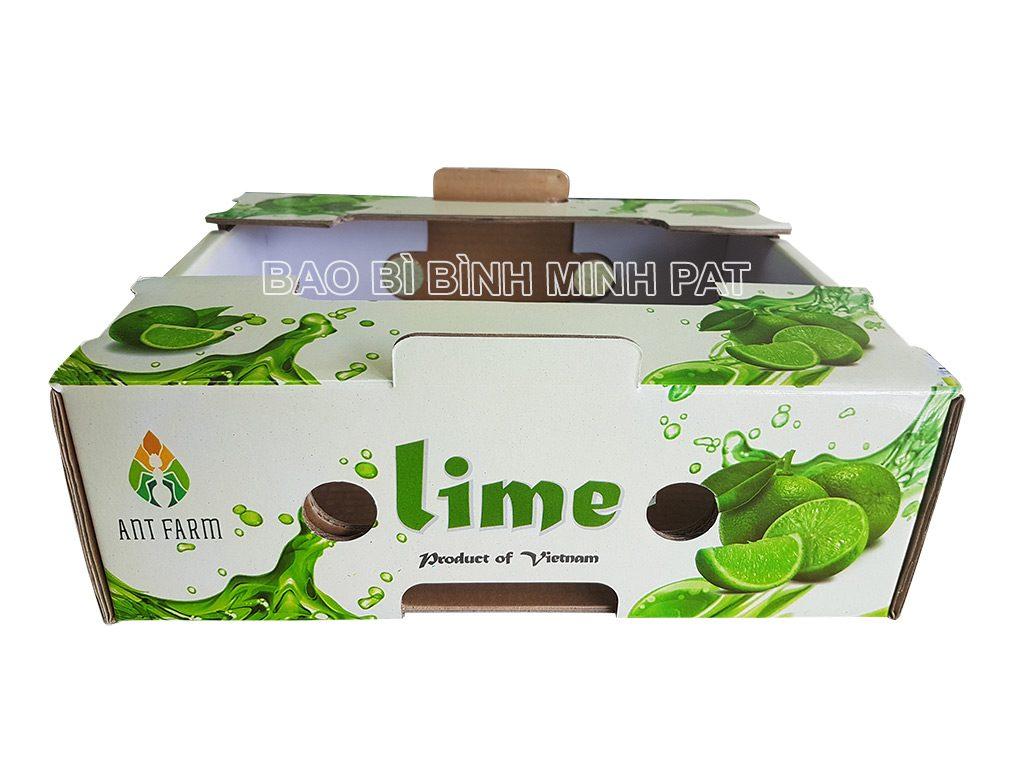 In thùng chanh xuất khẩu - hinh 1