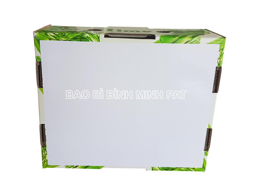 In thùng chanh xuất khẩu - hinh 5