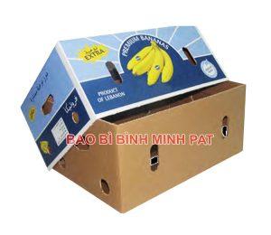 Sản xuất thùng carton đựng chuối xuất khẩu - hinh 2